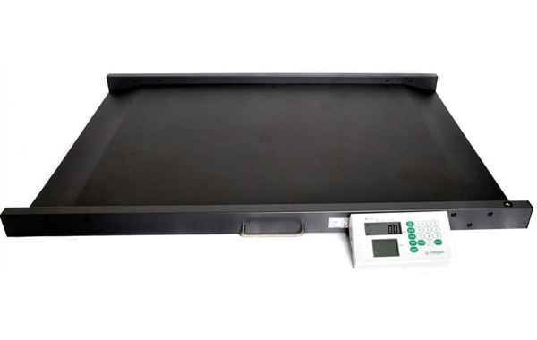 Professional Wheelchair Scales