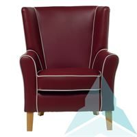 Oxford Armchair in Zest Wine