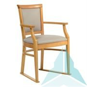 Kinley Dining Chair with Skis in Zest Cobble